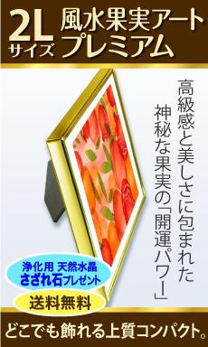 風水果実アートプレミアム2Lサイドバナー